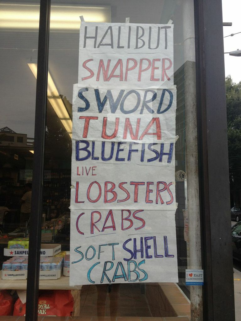 New Deal's Fishy Offerings