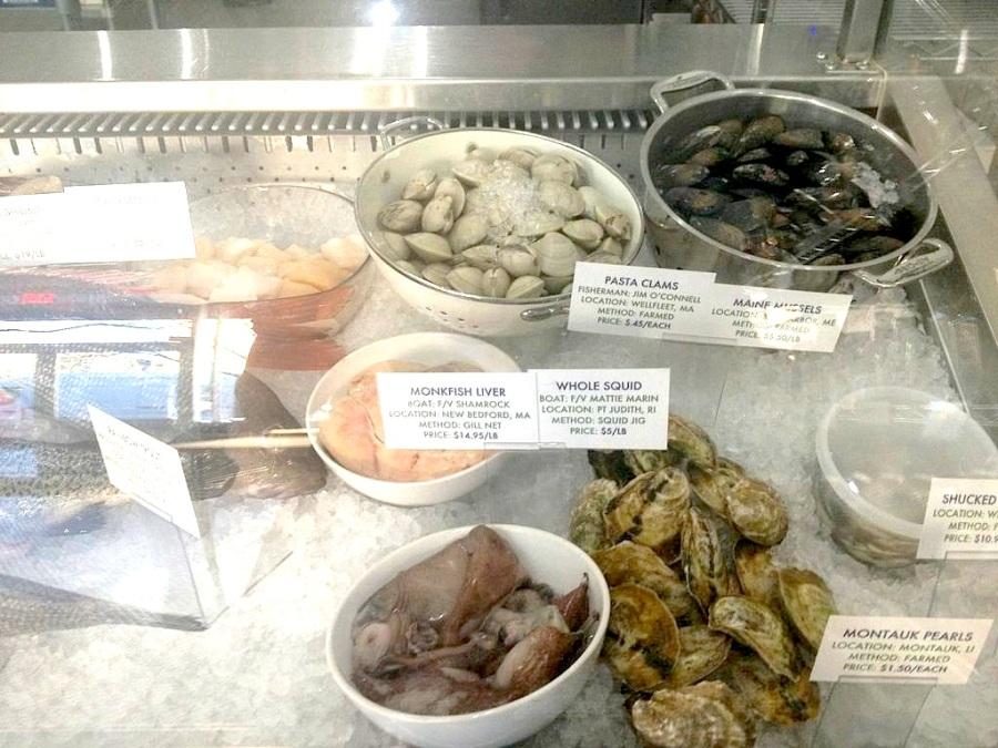 Fish Display 2